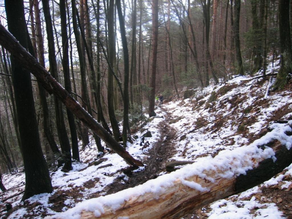 VTT Alsace/Vosges, Ste Odile, Barr, Ungersberg, Champ du feu IMG_0946