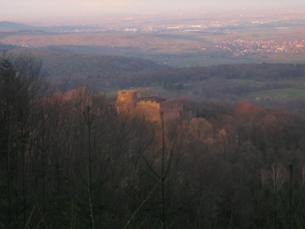VTT Alsace/Vosges, Ste Odile, Barr, Ungersberg, Champ du feu IMG_0949
